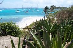 Tobago Cays 31.3.05 025